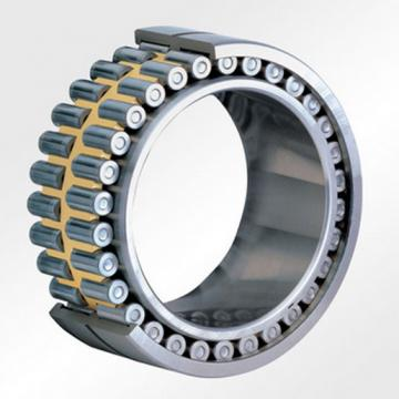 SL06044E-C3 Double Row Cylindrical Roller Bearing 220x340x150mm