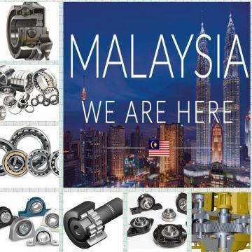 TRANS6160608 Eccentric Bearing wholesalers