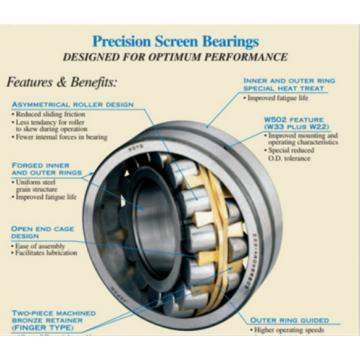SKF For Vibratory Applications 248/1700-MB BEARINGS